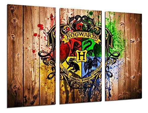 Cuadro Moderno Fotografico Peliculas Harry Potter...
