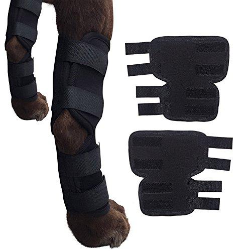 Hunde-Bein-Stützklammer-Canine-Hinterhockgelenk-Klammer, Kompressions-Verpackungs-schützen Wunden / heilen Verletzungen und Verstauchungen helfen Verlust der Stabilität verursacht durch Arthritis (M)