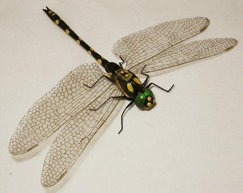Libelle schwarz-gelb, groß - Bestseller Qualität von ERRO-Design, Insektenmagnet, Tiermagnet, Dekomagnet, Sammelmagnet, Kühlschrankmagnet, Geburtstagsgeschenk, Geschenkidee