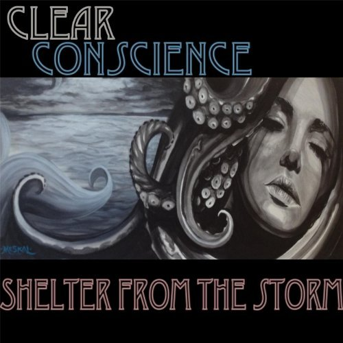 shelter-from-the-storm-by-clear-conscience