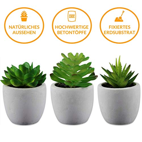 MOKINU - Künstliche Sukkulenten 3er Set Pflanzen mit echtem Beton Topf - dekorative Kunst-Blumen für Wohnzimmer Schlafzimmer Küche Büro Tisch-Deko