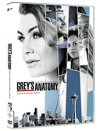 Greys Anatomy Stagione 14
