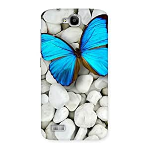 Cute Awesome ButterFly Multicolor Back Case Cover for Honor Holly