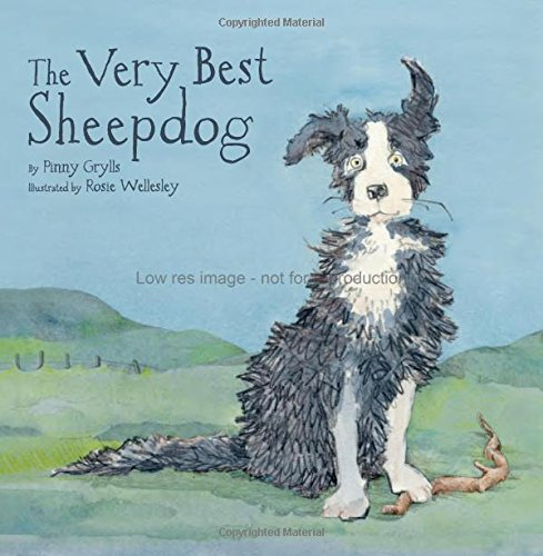 The-Very-Best-Sheepdog