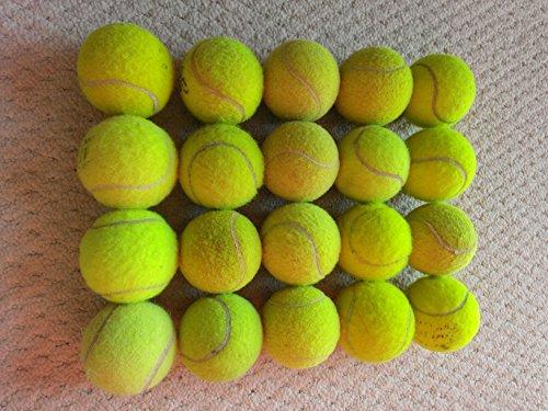e48c00b2464c0 20 x Pelotas de tenis Tenis – Top Estado – – ideal para su Fun – Kids –  Perros
