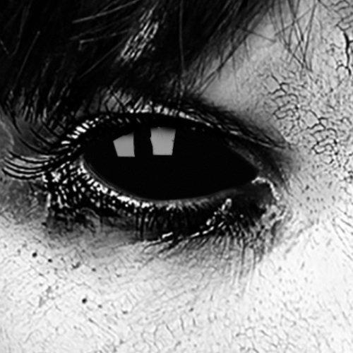 Preisvergleich Produktbild Funlinsen Black Sclera-Markenqualität- 1 PAAR-D-22mm-schwarze Linsen,Cosplay, Larp, Zombie Kontaktlinsen, Crazy Funlinsen, Halloween, Fastnacht,Vampir