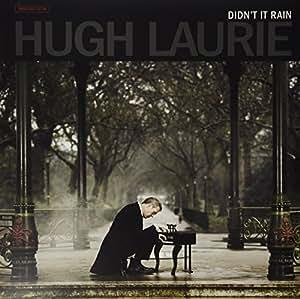 Didn't It Rain [VINYL]