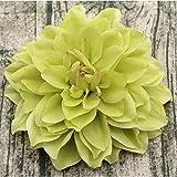 QWAEKQ Spilla Fiore 15Cm Grande Copricapo di Spilla di Seta Artificiale Dahlia Crisantemo Fatto A Mano Decorazione della Casa Fai da Te Testa