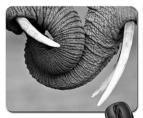 Yanteng (Alfombrilla de ratón Gaming Mouse Mat A412) Troncos de Elefante Alfombrilla...