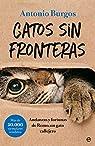 Gatos sin fronteras: Andanzas y fortunas de Remo, un gato callejero par Burgos