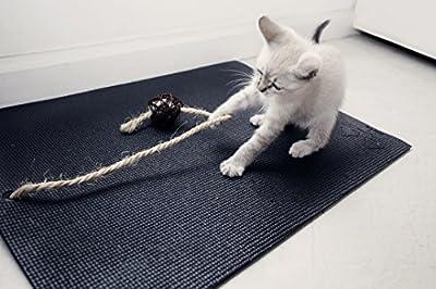 Climsom Yoga Matte für Katzen