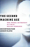 Second Machine Age: Work, Progress, and Prosperity in a Time of Brilliant Technologies