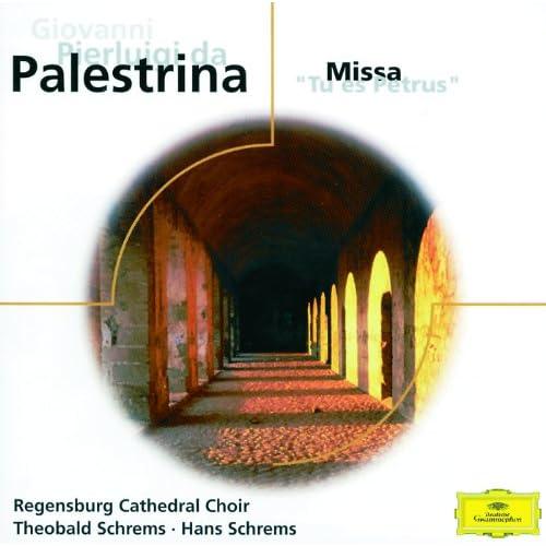 Palestrina: Tu es petrus - Motet