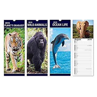 ALANNAHS ACCESSORIES Slimline 2019 Hanging calendar Daily Planner Dates Monthly Pets Nature Cars - -Planets Deadliest