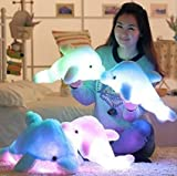 Kenmont Creative Night Colorful LED Light Soft Toy Glowing Stuffed Dolphin Plush Toys Relax Cushion Pillow (45cm, Blue)