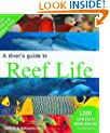 A Diver's Guide to Reef Life