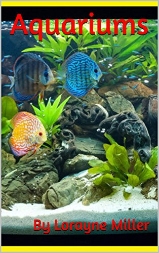 Aquariums (English Edition)