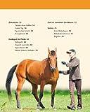 Bodenarbeit mit Pferden: Abwechslungsreiche Übungen, die Spaß machen - 4