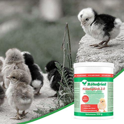 Röhnfried Kükenglück Aufzuchtpräparat (550 g), Kükenfutter mit Vitaminen als Pulver, Aufzuchtfutter für Hühner, Enten, Gänse, Truthühner & Geflügel - 6