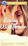 Loving a Wildflower (Starting Over Book 2)