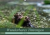 Wunderbares Thüringen - Gewässer (Wandkalender 2019 DIN A2 quer): Auch Thüringen ist durch seine Gewässerlandschaft geprägt. (Monatskalender, 14 Seiten ) (CALVENDO Natur)