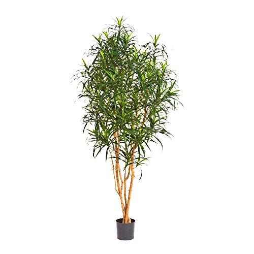 Kunstpflanze Dracaena reflexa Anita- Drachenbaum, Höhe 150cm - 1044 Blätter