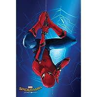 Pyramid International Hang Spider-Man Homecoming Maxi Poster, Plastic/Glass, Multi-Colour, 61 x 91.5 x 1.3 cm