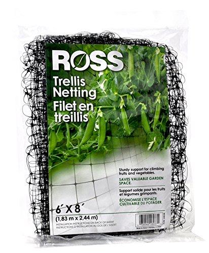 Ross en treillis (prise en charge pour l'escalade, fruits, légumes et fleurs) 6 Feet x 8 Feet noir