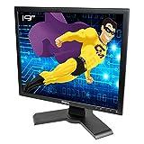 Flachbildschirm, PC, 19 Zoll (48,26 cm), LCD, 1280 x 1024, 5:4, VGA DVI Hub, 4 x USB-A, 1 x USB-B - Dell P190St