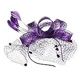 TEBAISE Damen Licht Haarreif Fascinator Aliceband Hochzeit Cocktail Haarschmuck Haarreif eleganter Fascinator mit Federn Blumen Kopfbedeckung Braut Hochzeit