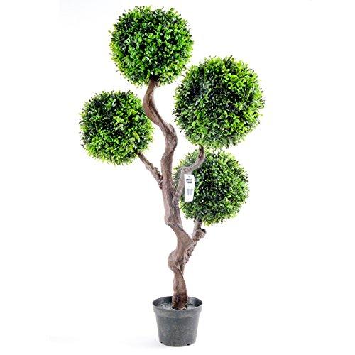 Geko pianta singola bosso artificiale arte topiaria for Pianta bosso prezzo