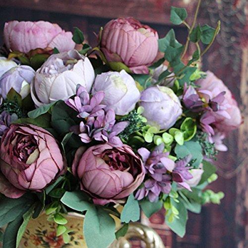 Double lumière Arbre pivoine, Graines « Noble » Rare graines de fleurs de pivoine Arbre des plantes, 10 graines / Paquet