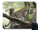 Yanteng-Mausunterlage mit der Wildtiersäugetierkatze Kundengebundene Mausunterlage