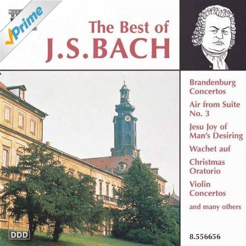 Concerto for 2 Violins in D minor, BWV 1043: Largo ma non tanto