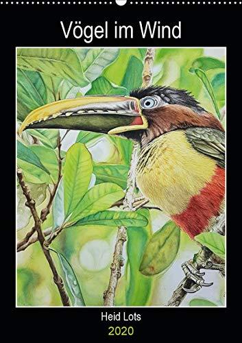 Condor Vogel (Vögel im Wind (Wandkalender 2020 DIN A2 hoch): Vögel die in Argentinien leben und auf Aquarell verewigt bleiben. (Planer, 14 Seiten ) (CALVENDO Tiere))
