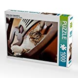 Liebevoller Katzenblick 1000 Teile Puzzle quer