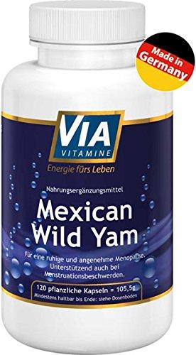 Mexican Wild Yam 750 mg - 120 Kapseln kein Extrakt Angebot -