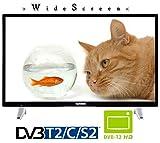 Telefunken L32F287X41 LED TV Fernseher 32 Zoll 81cm DVB-S2/C/T2 CI+ 230Volt