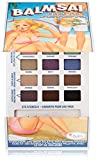 theBalm Balmsai Eyeshadow and Brow Palette with Shaping Stencils 18 Colors