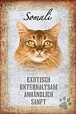 ComCard Katze steckbrief: Somali Katze - exotisch, unterhaltsam, anhänglich, sanft Schild aus Blech, Metal Sign, tin