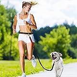 Splink Hunde Joggingleine mit Ruckdämpfer Einstellbar reflektierende Bauchgurt (70-145cm), Elastische Nylonband Freihändigen Bungeeleine Hundeleine für Outdoor Joggen, Spazieren und Wandern(130-190cm dehnbar)
