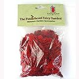 Rentier Moos rot Fiddlehead Fairy Garden