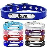 TagME Personalisierte Hundehalsbänder aus Leder/Weich Gepolstertes Hundehalsband/Löschen Sie Name, Telefonnummer und Mikrochipnummer/Passend für kleine Hunde/Marineblau