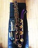 FidgetGear - Sassofono baritono professionale, colore: viola