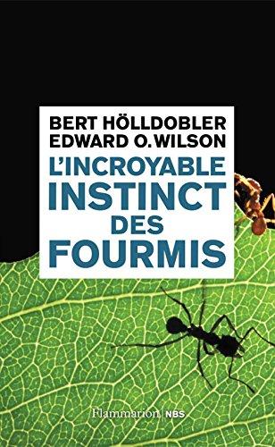 L'incroyable instinct des fourmis: De la culture du champignon à la civilisation