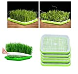 YAKOK Seed Sprouter, 5PCS Double-Layer propagatore Seed Sprouter Vassoio di germogli di Vassoio di Semi germinazione