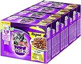 Whiskas Katzen-/Nassfutter Ragout Geflügelauswahl Junior, für junge Kätzchen, 4 Packungen (4 x 12 x 85 g)