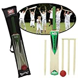 SIZE 3 CRICKET SET WITH STUMPS AND BALL OUTDOOR GARDEN BOYS GIRLS SPORT ACTIVITY by Guaranteed4Less