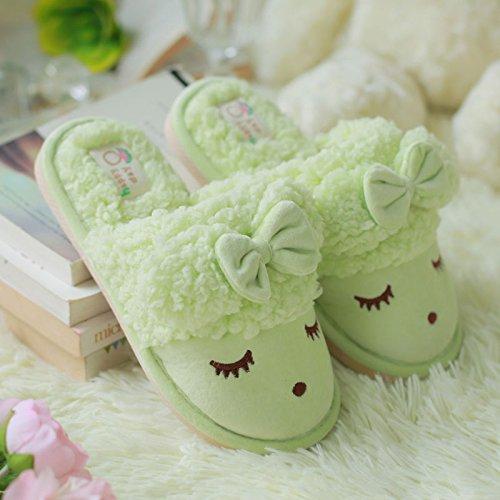 DogHaccd pantofole,Il cotone pantofole da femmina a maschio coppie inverno pacchetto di soggiorno nel gancio incantevole inverno caldo pantofole di peluche. Il verde4