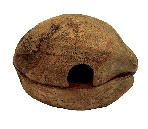 Namiba Terra 0411 Reptilien- Amphibien- Kleintierhöhle, Froggy-Home, Kokoshöhle 2teilig, liegend